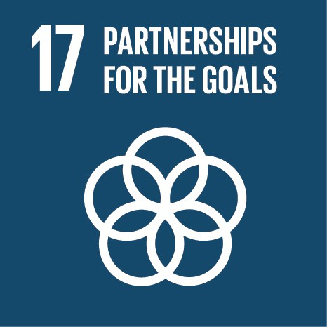 Multi-stakeholder partnerships with communities, private sector, civil society organizations, UN agencies and Governments to help realize the SDGs